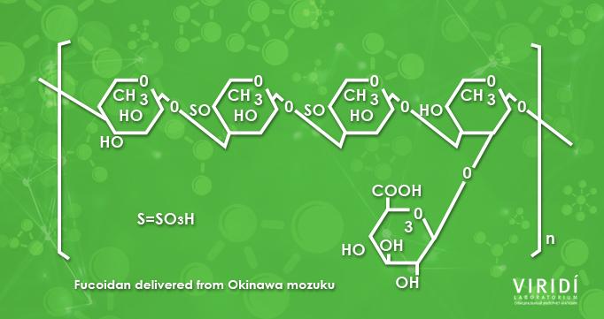 Лечебные свойства Фукоидана